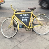 Aleion